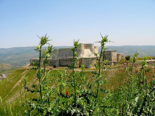 Крепость Крак де Шевалье