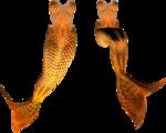 русалочки