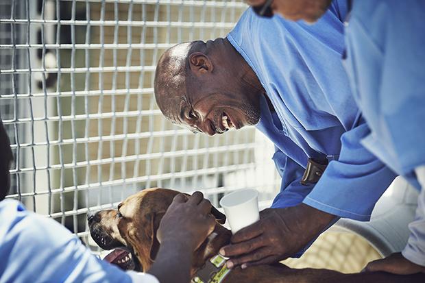 «Пес любит тебя даже в тюрьме»: как помогают друг другу заключенные и бездомные собаки (22 фото)