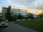 Пулковское шоссе 91