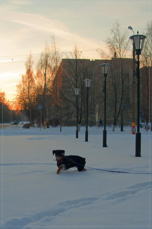 http://img-fotki.yandex.ru/get/4105/gloriy-a.d/0_26dbd_c03c998d_XL.jpg