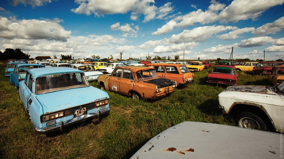 3. По словам Михаила в настоящий момент у него в коллекции находится 320 автомобилей и осталось собр