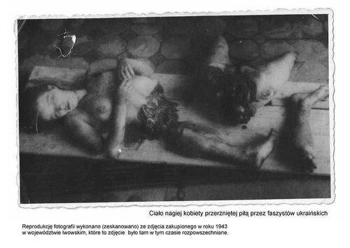 Хроники триффидов: Бандеровские права человека