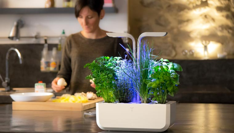 Veritable - A connected and autonomous interior garden imagined by a French team