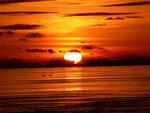sun-1600.jpg