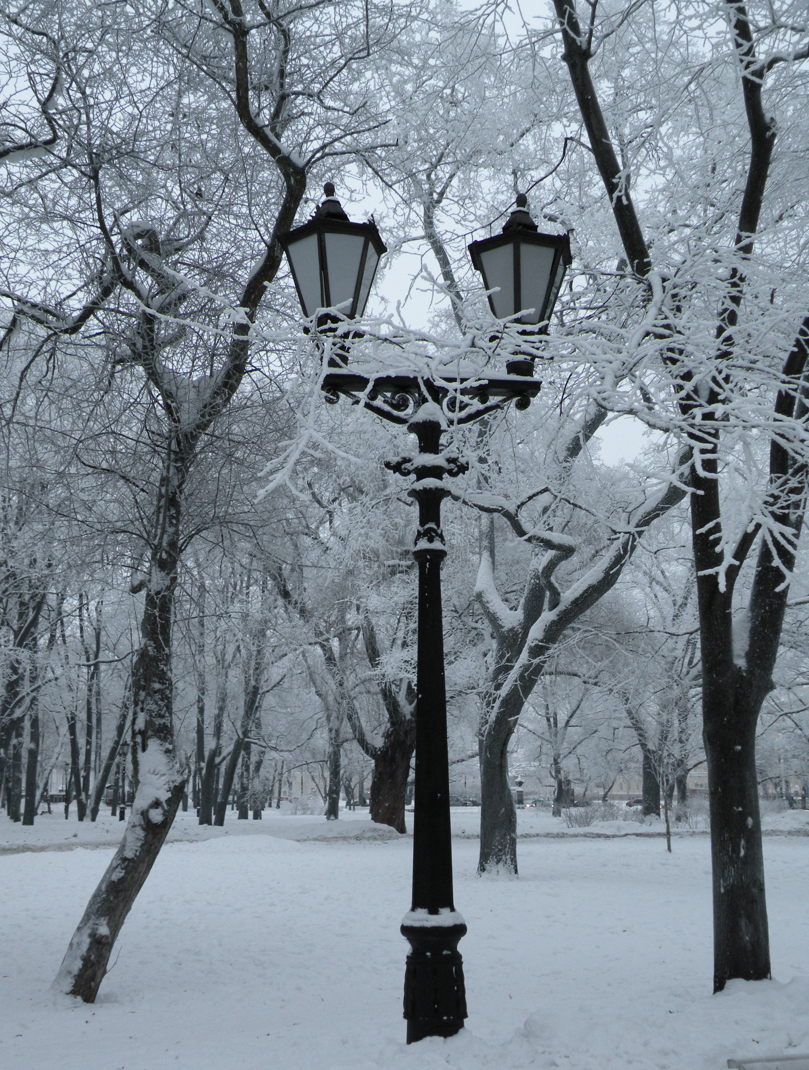 Городская зимняя сказка!