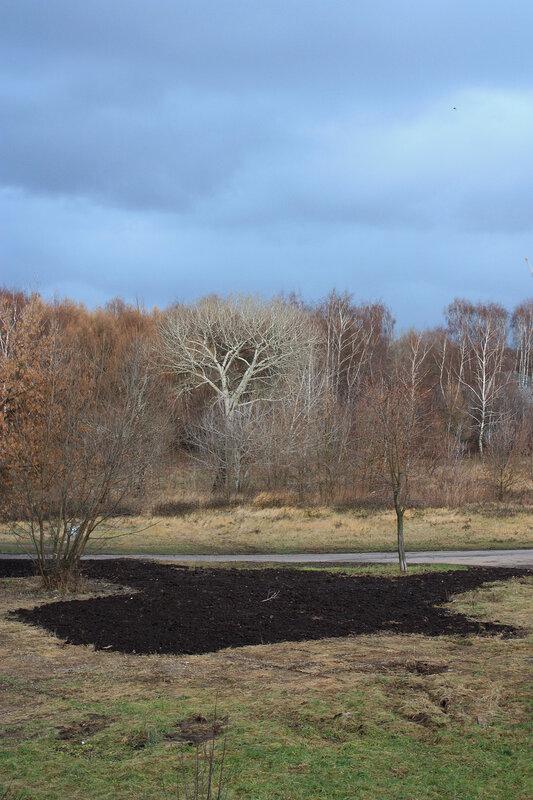 Малая пашня в ноябре