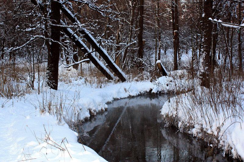 У реки. Отражение