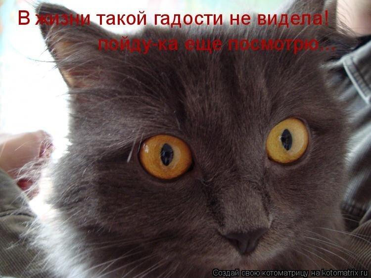 ПозитивФчик  для  ДРУЗЕЙ !!!!