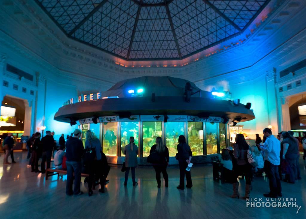 1.11.13-Shedd_Aquarium-LO-1.