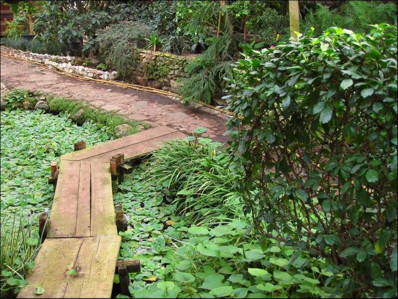 Мостик через пруд в японском садике