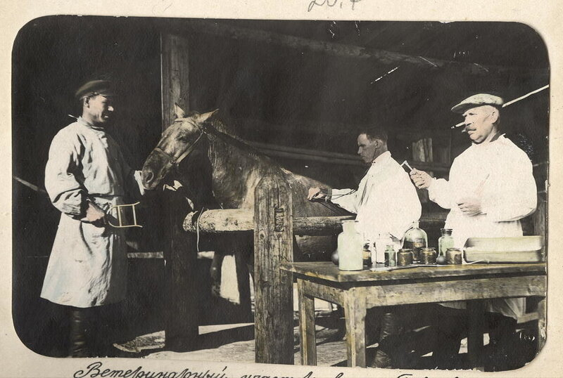 Ветеринарный участок в поселке Бакчарского