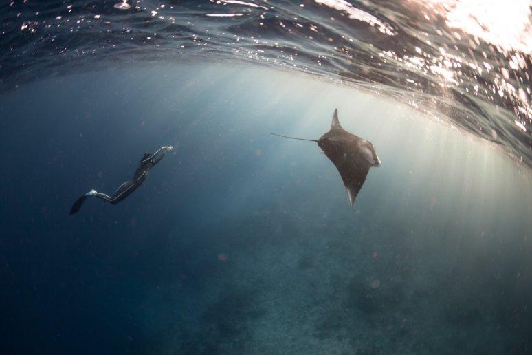 Breathing underwater, Alex Voyer and Alex Roubaud80.jpg