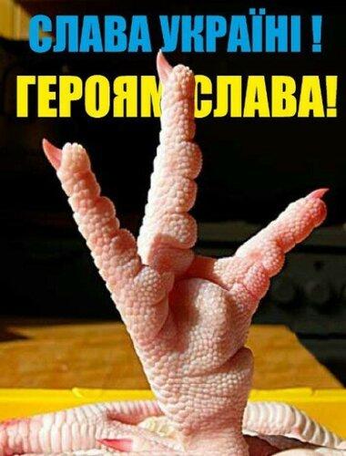 Хроники триффидов: Новые тупизмы Кличко