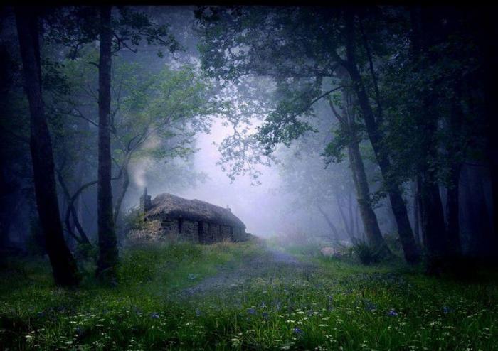 Дом на краю земли