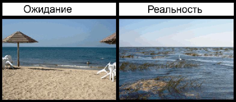 Картинки прикольные про отпуск ожидание реальность