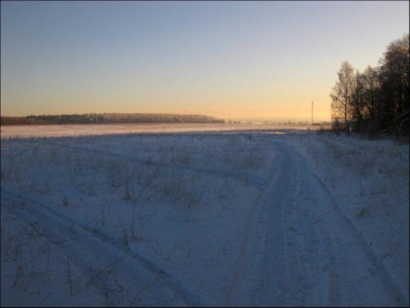 Протасовские поля, вид в сторону Икшинского водохранилища