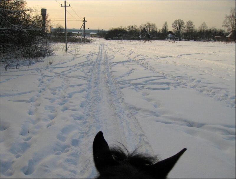 Дорога к конюшне