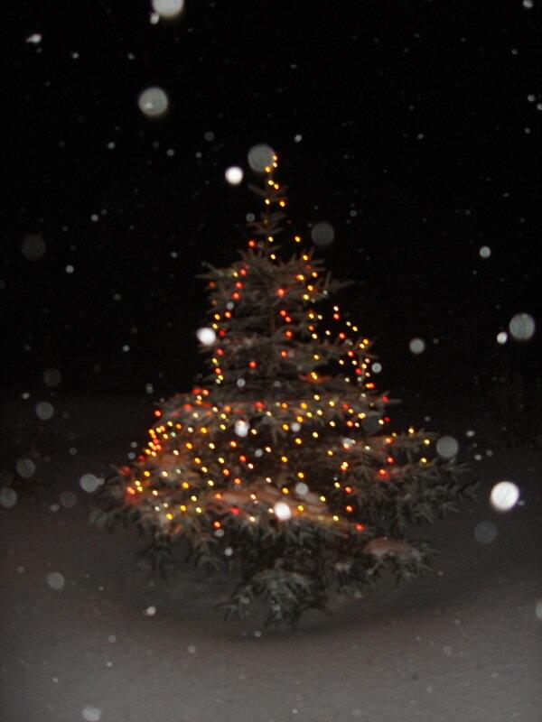 Зима.Рождество.с.Остров