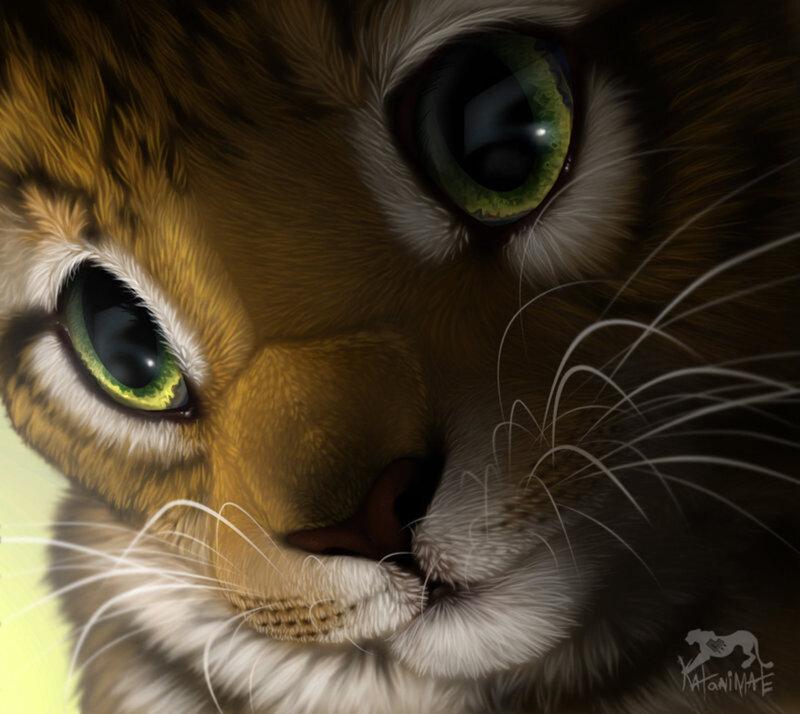 Милые животные от katanimate обсуждение на