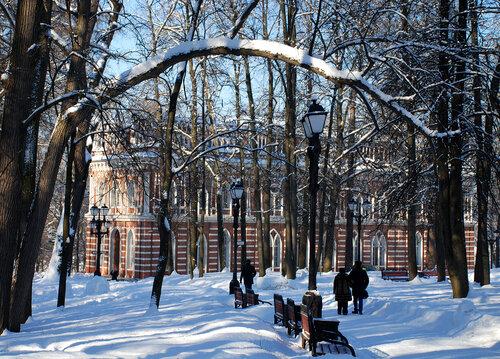 Зима в Царицынском парке