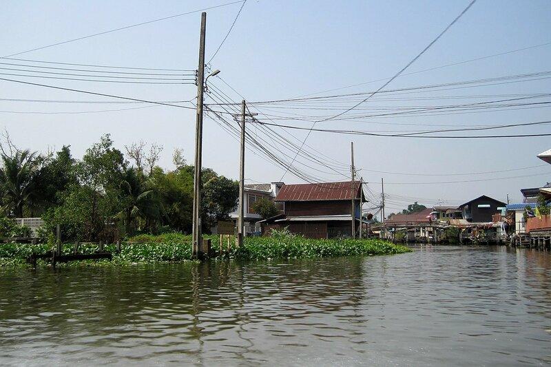 Столбы с проводами, заросли лотоса и дома в канале (клонге) в Бангкоке, Таиланд