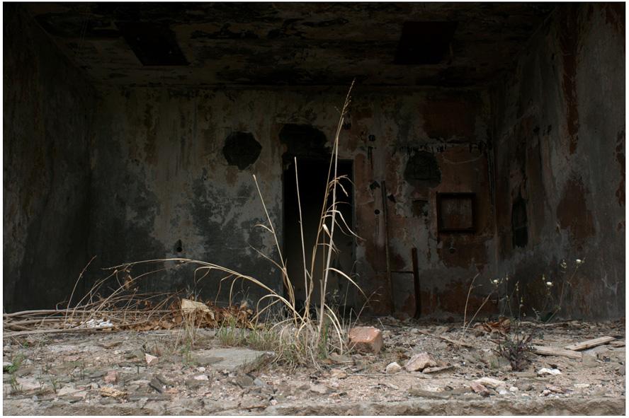 Сухуми. Фотограф Кирилл Кузьмин