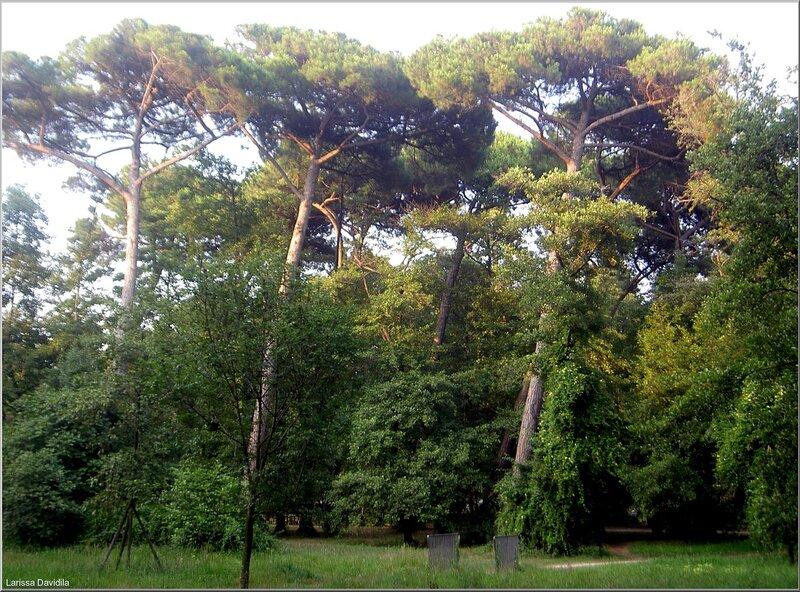Viareggio-2006 (10)