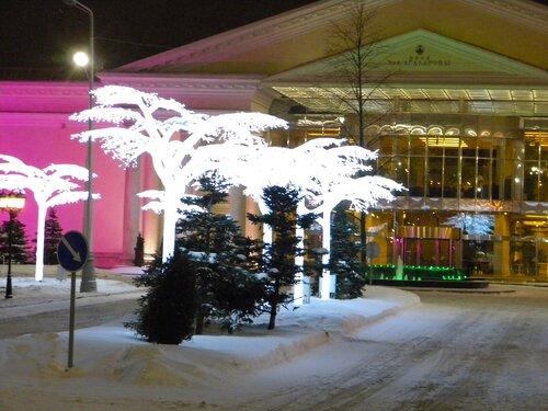 Ночь.Зима. Крокус