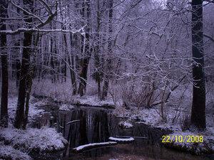 Первый снег прикрыл чёрные голые ветки ольхи, а ручей Хоперенка всё ещё резво стремится к реке Белизна.