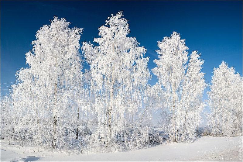 http://img-fotki.yandex.ru/get/4109/partneropt.f/0_45635_b94b3c25_XL