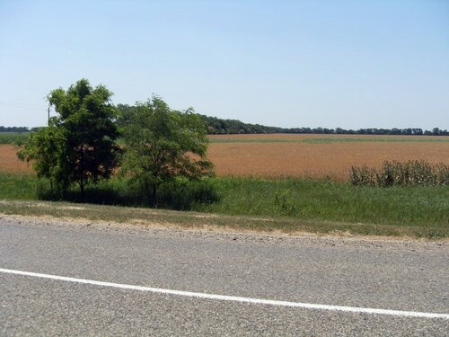Одиночный велопробег. Ясенская коса. Июнь 2009