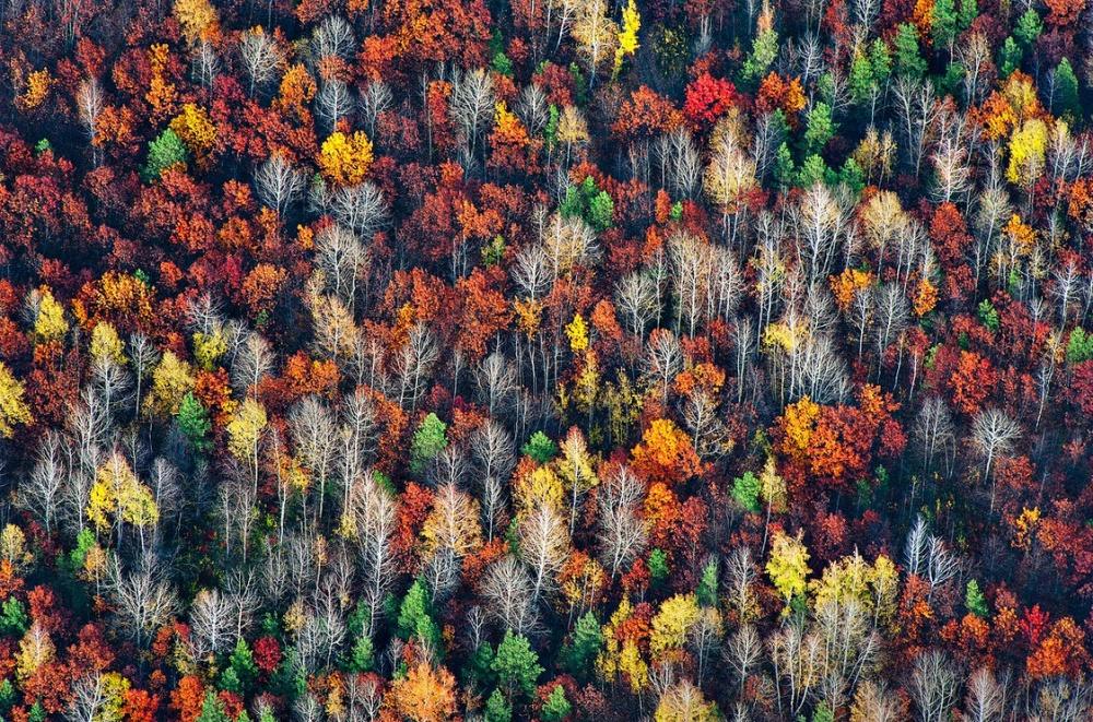 Источник: distractify Смотрите таже: Природный сюрреализм Самые красивые места наЗемле