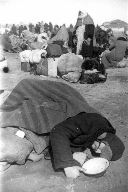 Умерший от голода на станции Кобона