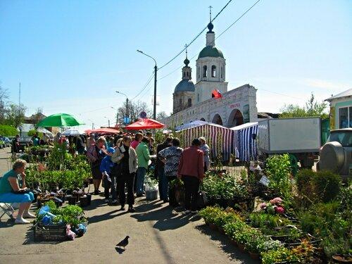 Цветочная ярмарка в Зарайске