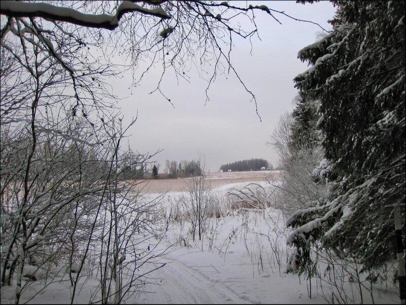 Выезд на Морозовские поля