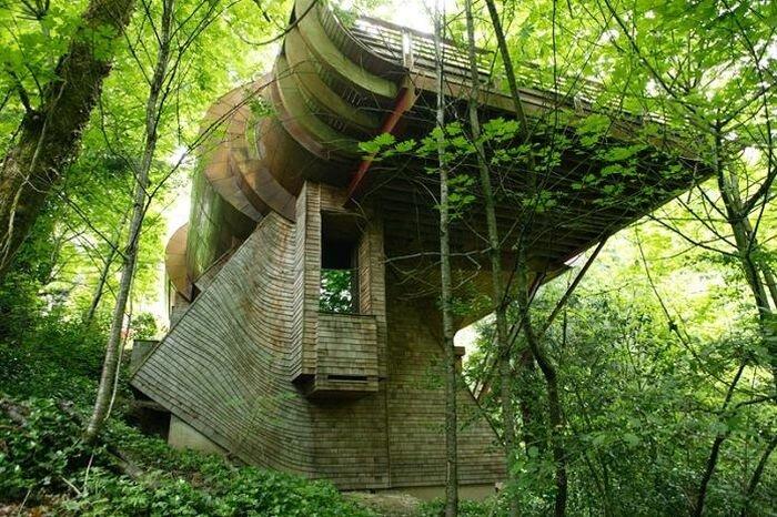 Необычный дом в лесу