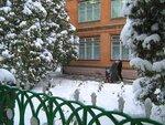 Новости Калининского района Краснодарского края на сайте http://kalininets.info/