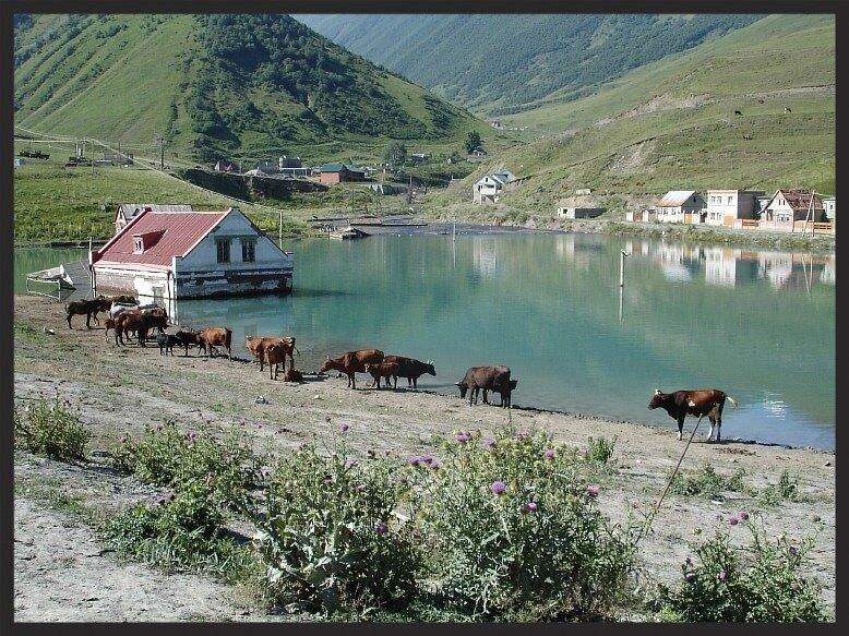 с.Горная Саниба. Август 2007г. Подпрудное озеро от ледника Колка.(DSC01799.JPG)