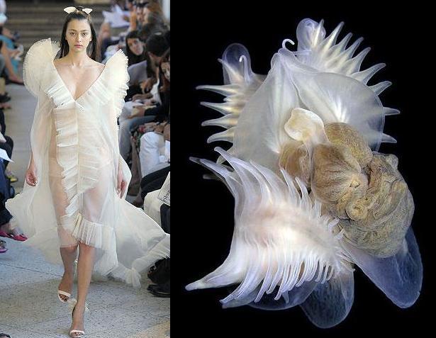 Самый лучший дизайнер заработать моделью онлайн в спасск рязанский