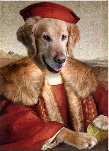 Портрет слова собака