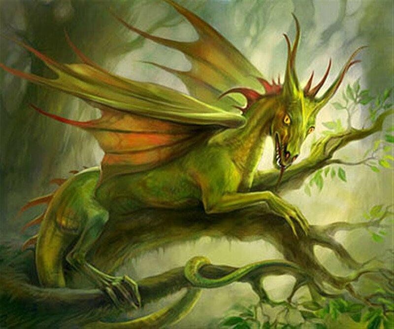 фото дракона света