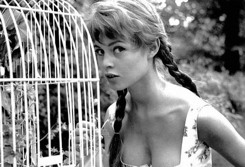 Бриджит Бардо (Brigitte Bardot)