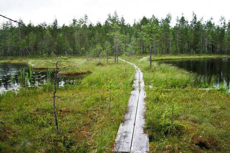 тропа по деревянному настилу между двух озер Лентамот возле Lentamon laavu