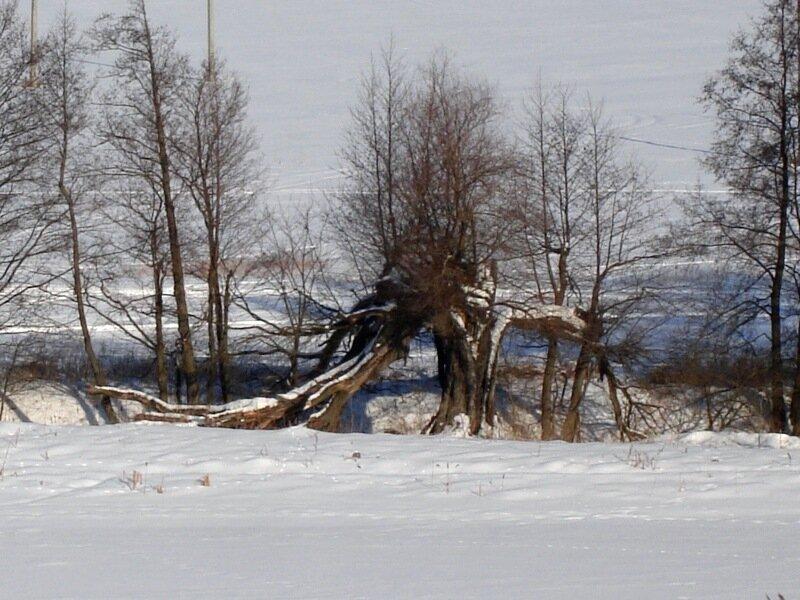 Зима,с.Остров