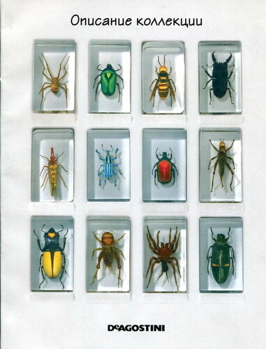 все журналы насекомые и их знакомые