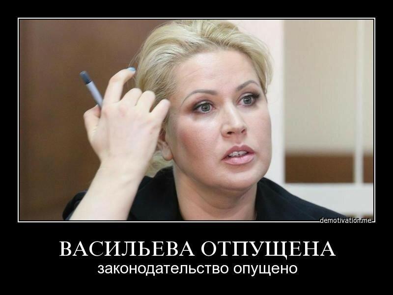 Васильева отпущена, законодательство опущено