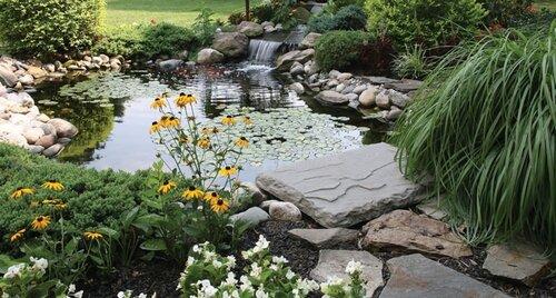 водоем на даче в саду