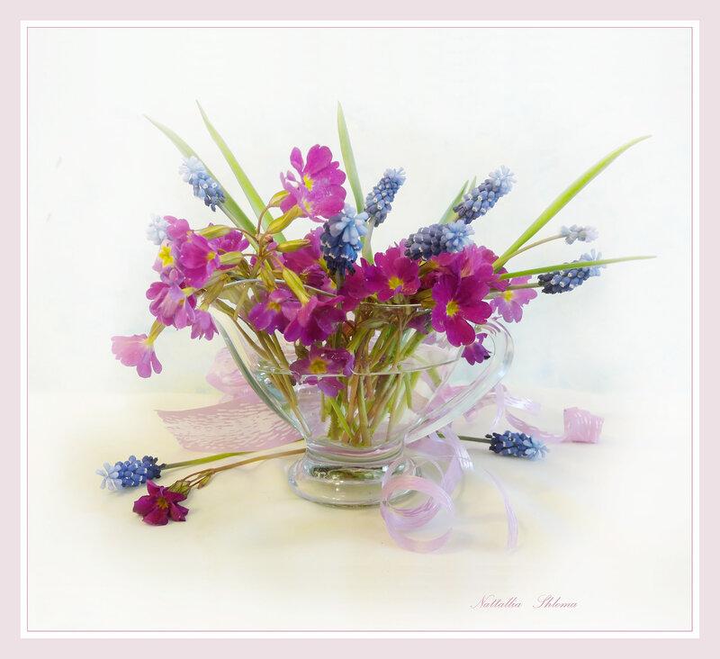 Первоцветы весны