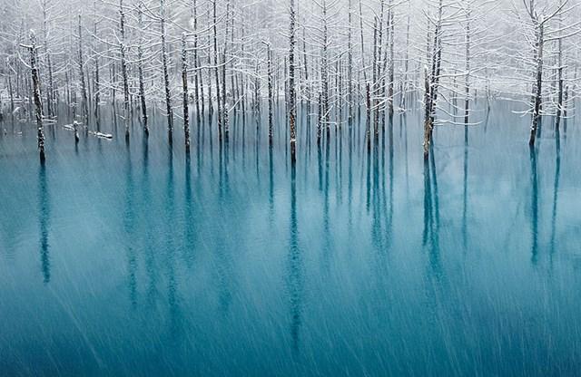 100 самых красивых зимних фотографии: пейзажи, звери и вообще 0 10f5b4 8661423d orig